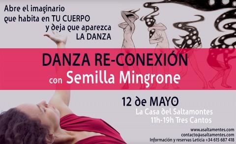 Cartel Semilla Danza abril